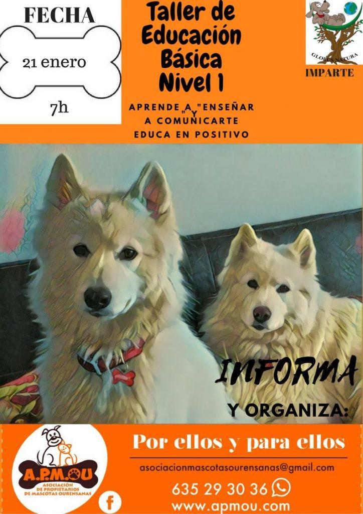 Cartel Educación Básica Canina