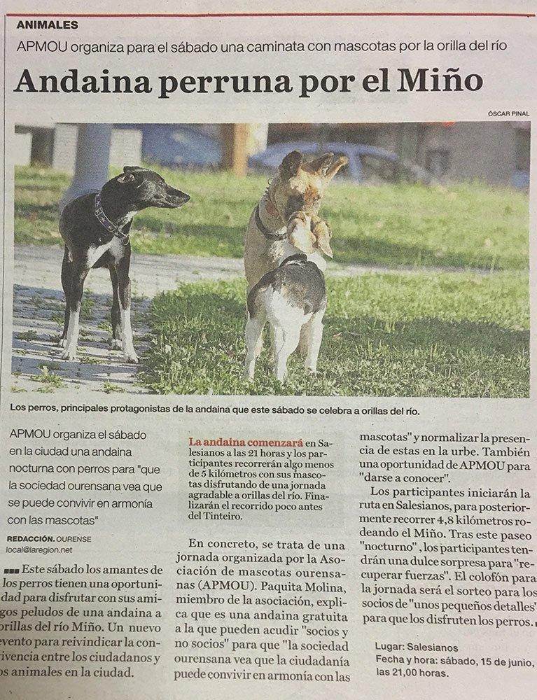 Recorte de prensa Andaina Nocturna