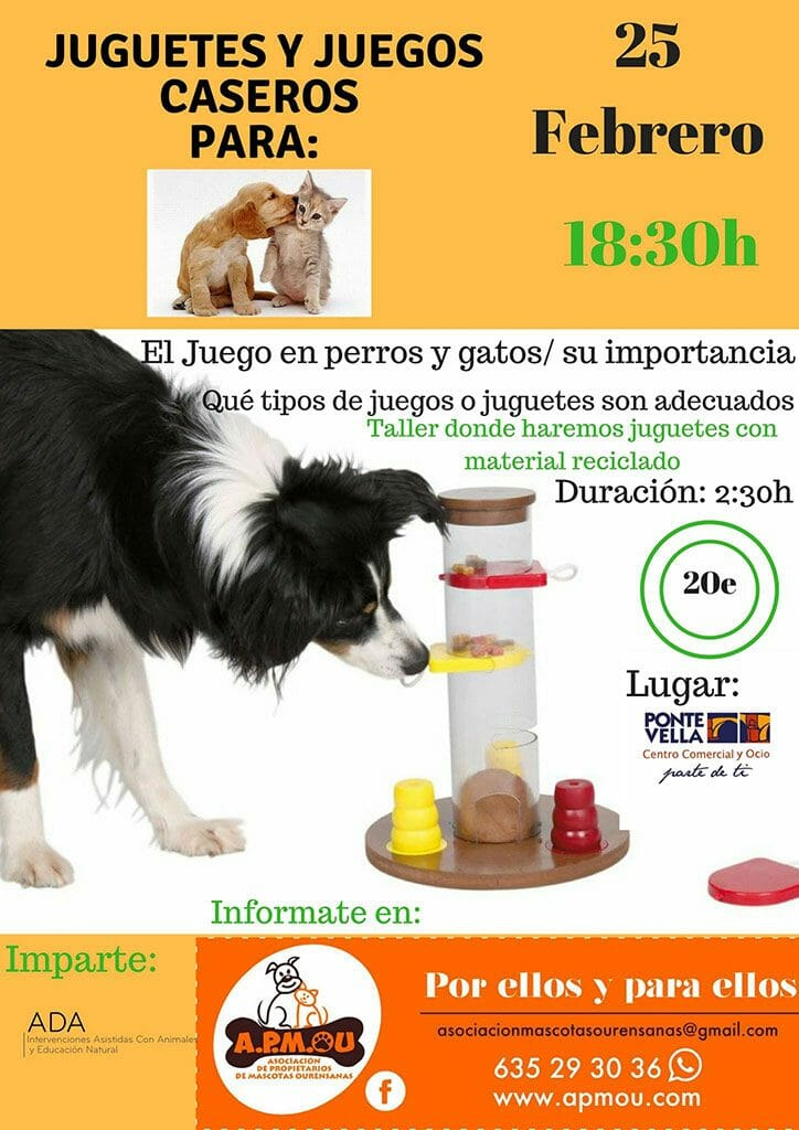 Cartel Juguetes caseros para perros y gatos