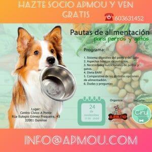 Cartel Pautas alimentación para perros y gatos