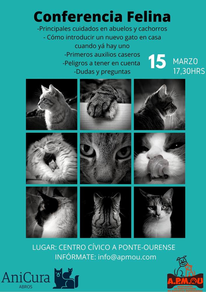 Cartel Conferencia Felina