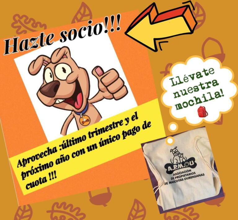 Último Trimestre + mochila gratis