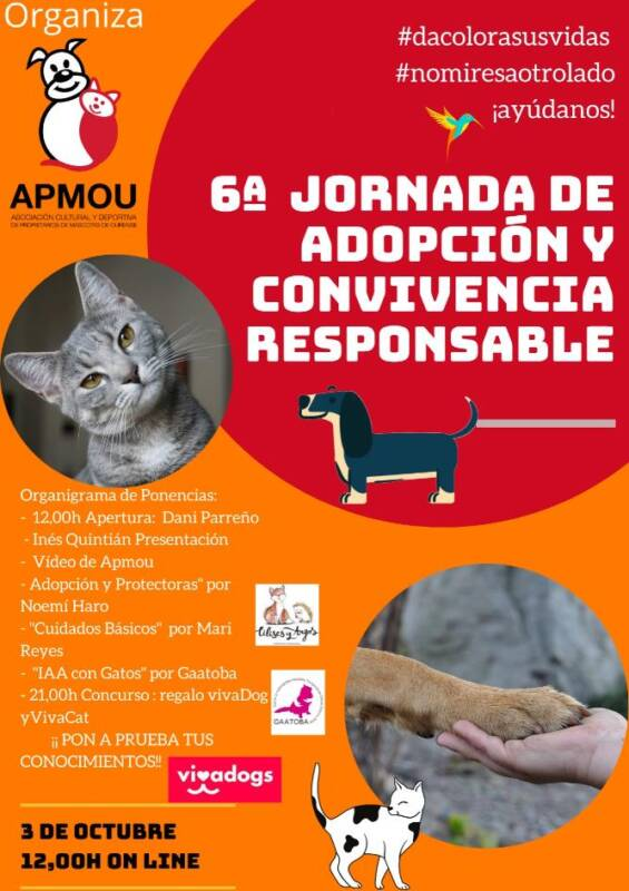 Cartel-6-jornada-adopcion